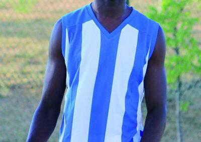 Nikos camiseta franjas azules y blancas